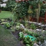 Květinový servis nabízí úpravy bez hranic - upravíme květiny na zahradě i okolo jezírka.